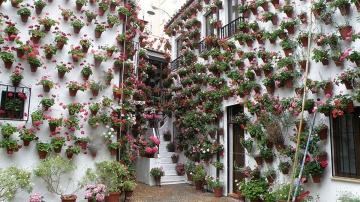 Destinos en España para disfrutar de la primavera