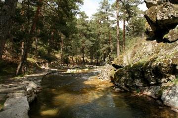 Excursión de un día en la Sierra de Madrid
