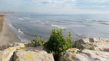 Fin de curso disfrutando de las playas valencianas