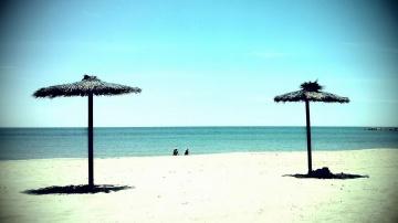 Razones para visitar Valencia en tu viaje de estudios